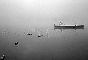 Dock & Buoys
