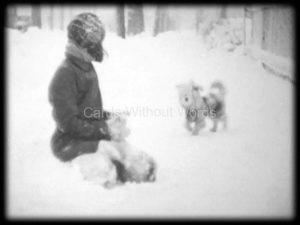 Snow Dog 2